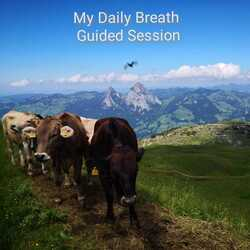 Let Danielle support your home practice with a guided audio recorded in Nature from the Alps. 16 minutes (Guidance in and out with a 10 min breathing practice). Price: 15.-